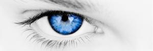 Blog vision1